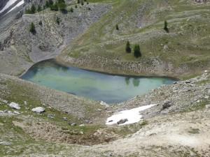 lac 1 C